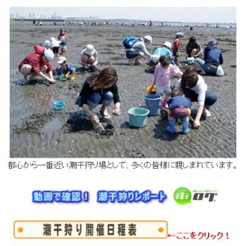 潮干狩り ふなばし三番瀬海浜公園