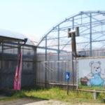 【イチゴ】中村いちご農園