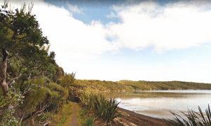 ニュージーランド 一番南にある島 スチュワート島