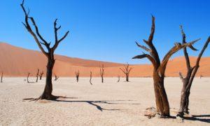 ナミビアにあるデッドフレイ